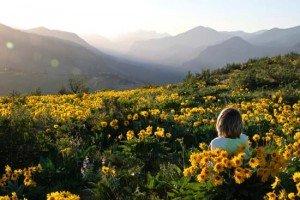 ¿Qué es esto del Mindfulness que parece que se ha puesto de moda?