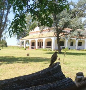 Retiro de Conexión Consciente en Córdoba, Argentina