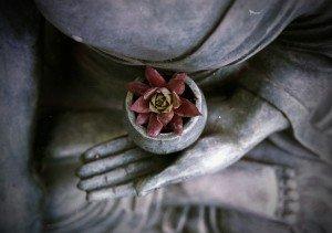 Retiro de Meditación Vipassana: diez días de introspección y silencio