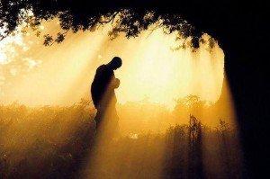 Reconéctate con tu ser. El poder del Silencio